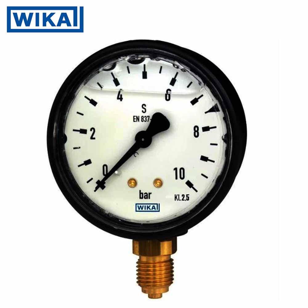 Đồng hồ áp suất Wika,Thân nhựa,Model 113.13